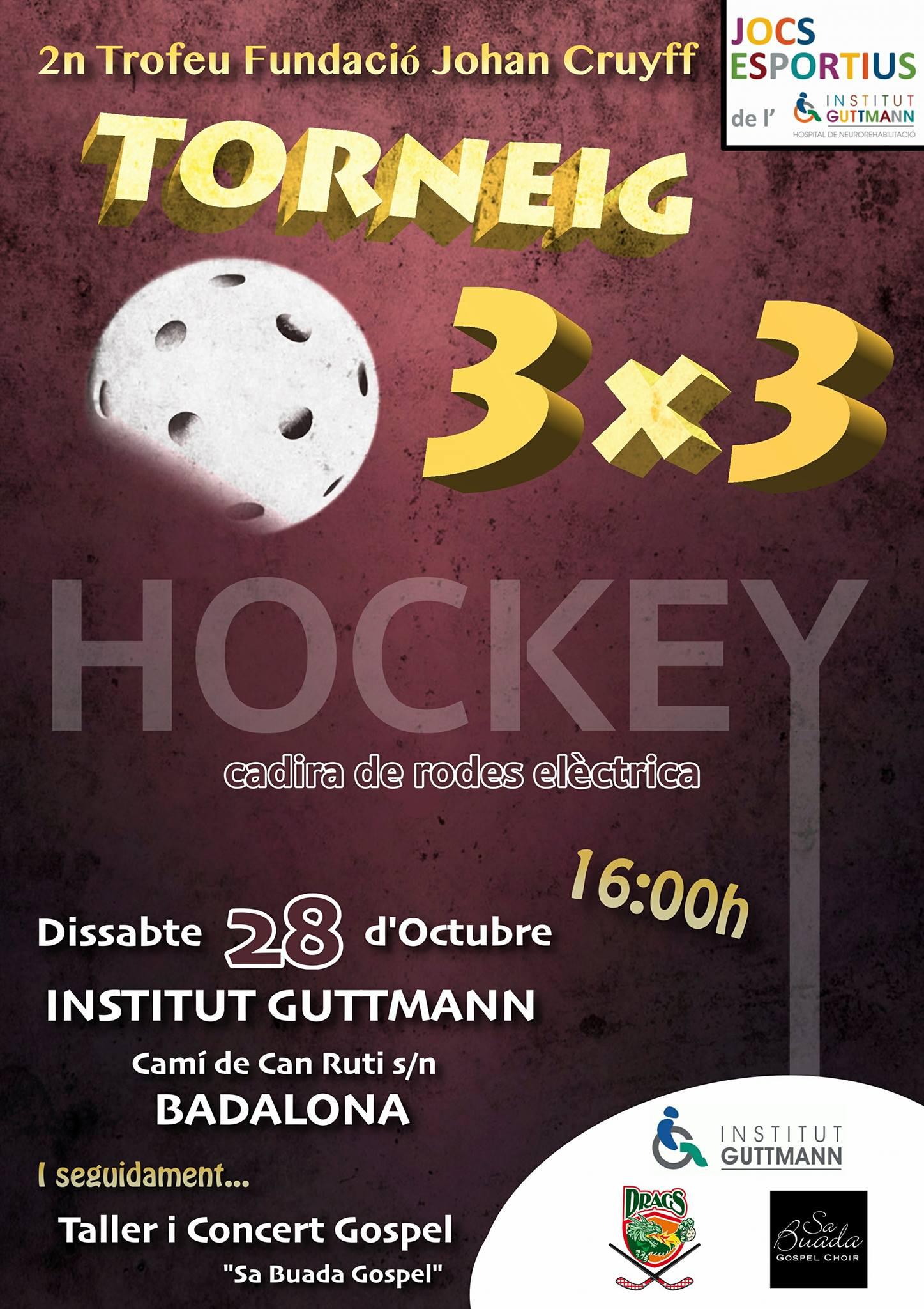 Segundo torneo 3×3 de hockey adaptado